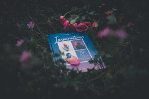 Inspirations de Natacha Birds, un merveilleux livre pour resté inspiré et nous donner l'envie de créer au quotidien ! www.lesyeuxbleus.net
